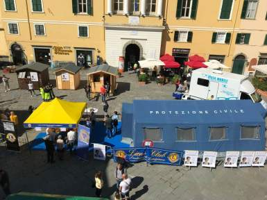 lions in piazza 3
